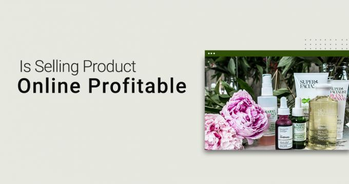 Is Selling Products Online Profitable? - A Complete Analysis