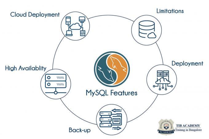 MySQL training in Bangalore | Best MySQL Course in Bangalore | TIB