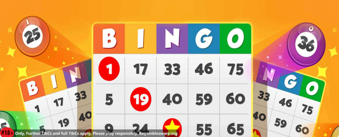 An introduction into the world of online bingo sites - Bingo Sites New