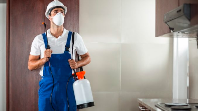 Pest Control Services Fulham Regarding Your issues
