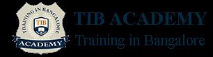 Informatica Training in Bangalore | Best BI Course Training Institute | TIB