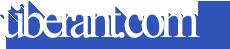 10 Pinterest Accounts to Follow About term life insurance vs whole life insuranc