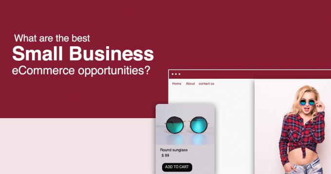What are the Best Small Business Ecommerce Opportunities?