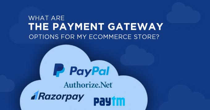 What are the Payment Gateway Options for my Ecommerce Store?
