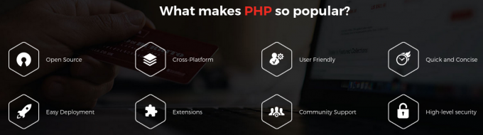 Blogspot-Why PHP Programming is Popular Among Developers Across the Globe?