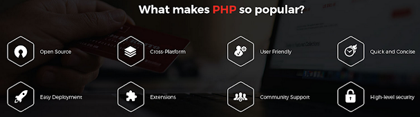 Fc2-Why PHP Programming is Popular Among Developers Across the Globe?