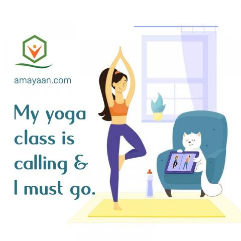 Yoga Poses For All Bodies