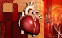3D Medical Rendering , 3D Medical Rendering Visualization , India