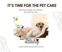 Pet Grooming Singapore - JustPaste.it