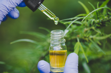 UK's best CBD oil