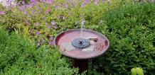 Best Solar Birdbath Fountain (January 2021) – WrightGrid