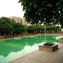 Destination Wedding in Bhiwadi | TreeHouse Resort Bhiwadi