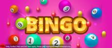 Enjoy our best online bingo sites uk offers
