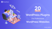 WordPress Plugins For Professional WordPress Websites   Hire a WordPress Developer