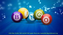 Play Best Online Bingo Sites For Winning - Lady Love Bingo