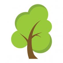 Top Flutter App Development Companies | Hire Best Flutter Developers