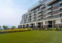 Properties for Rent in The 8, Palm Jumeirah | LuxuryProperty.com