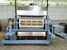 Egg Tray Production Line - Exported to 30+ Countries