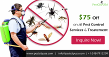 How to Mosquito control at home | Mosquito Removal Services Detroit?: ext_5710499 — LiveJournal