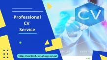 Professional CV Service