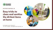 Easy tricks to clean and sanitize the dirtiest items at home
