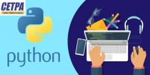 Python Training: Do You Really Need It? The Article Will Help You Decide!