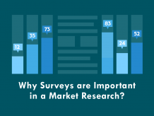 6 Reasons Why WordPress Survey Tools Are Essential for Market Research