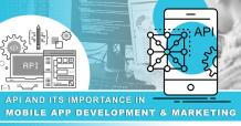 API and its importance in mobile app development and marketing | 01