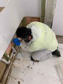 How Can We Identify The Best Mold Removal Melbourne Company