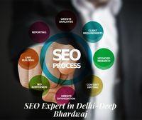 SEO Expert in Delhi-Deep Bhardwaj - Blog View - SocialEngine PHP Demo
