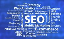 How To Find A SEO Expert In India? - Blog View - SocialEngine PHP Demo