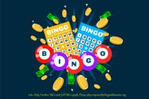 Lady Love Bingo - Guidelines for Playing Online Bingo Games