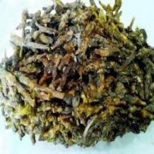 Dikamali for Babies   Dikamali Powder   62% Off - Hotshelf India