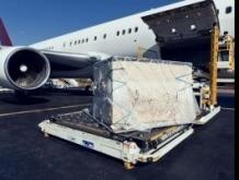 Air cargo volumes remain stable in January: WorldACD
