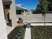 About Alessios Gardens - Perths Favourite Landscaper
