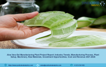 Aloe Vera Gel Manufacturing Plant Project Report, Cost and Revenue, Industry Trends, Machinery Requirements, Business Plan, Raw Materials, 2021-2026 | Syndicated Analytics – Research Interviewer
