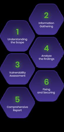 TechForing - Vulnerability Assessment