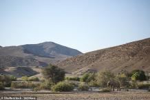 Elephant kills 59yrs old Australian tourist in Namibia