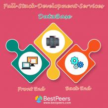 BestPeers Infosystem- Product Web Development Company in Indore