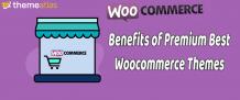Benefits of Premium Best Woocommerce Themes