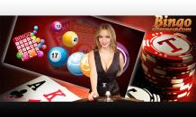 Bingo games with play most popular best bingo sites to win