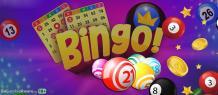 Beginner to get aware with best new bingo sites gambling