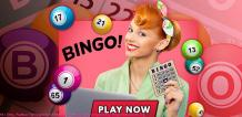 Things to look for when selecting a Bingo Sites Online