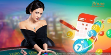 How to compare best online bingo sites uk play games – Delicious Slots