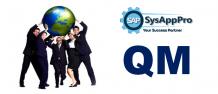SAP QM Course in Noida