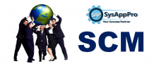 SAP SCM Online Course in Gurgaon