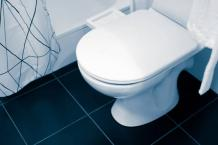 Best Toilet Seat for Heavy Person - Top 10 Seats for 2021