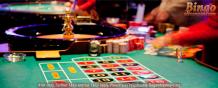 Bingo bites new bingo world unique promotion