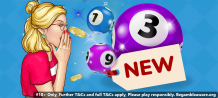 What are bingo sites new networks?