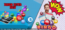 A brand new look at bingo sites new – Delicious Slots